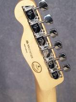 FANTT_headstock-back_sm_.jpg