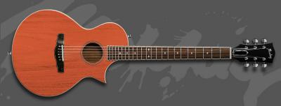 Garcia The Exotic Acustic Guitar.jpg