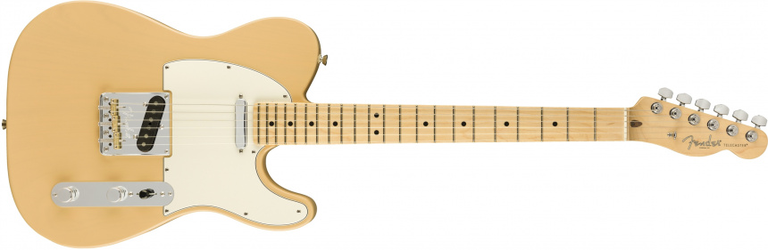 Lightweight Ash American Professional Tele