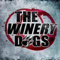 Mike Portnoy, Richie Kotzen y Billy Sheehan forman The Winery Dogs