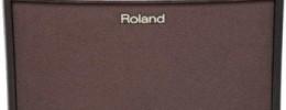 Roland AC-33RW y AC-60RW