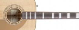 Nueva Fender Elvis Kingman