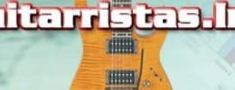 La Evolución de Guitarristas.Info.