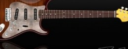 Nueva marca de guitarras: Dean Zelinsky Private Label