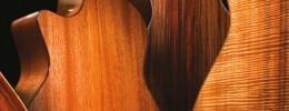 Estudio sobre Maderas para Guitarras, por Demolittiontatoo
