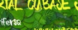 Segundo Tutorial de uso básico de Cubase SX3