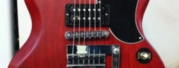 Prototipo de la próxima signature de Dweezil Zappa