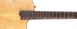 Wilcox anuncia la Atlantis Thinline Edition