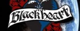 Blackheart handsome devil bh15