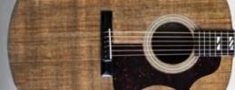 """Blackbird Guitars anuncia """"El Capitan"""", la primera guitarra hecha de Ekoa"""