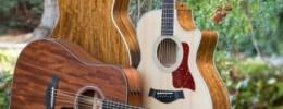 Taylor presenta nuevas guitarras para la primavera 2014