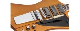Gibson Skunk Baxter Firebird