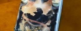 Pro Tone Pedals Haunted Delay, el delay signature de Mark Holcomb de Periphery