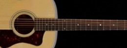 Nueva serie Standard de Guild Guitars