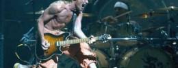 Gira + Disco de Van Halen en 2011