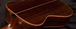 Normativa CITES: alternativas a la madera de palo rosa