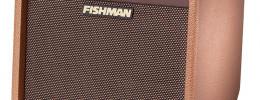 Amplificador Fishman Loudbox Mini Charge con batería recargable