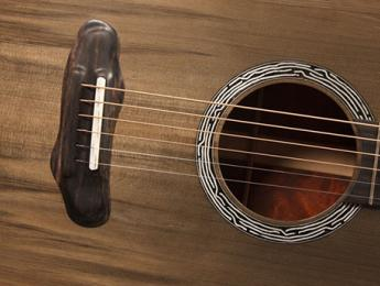 Slash recibe una guitarra hecha con madera de un árbol legendario