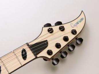 Caparison Dellinger-JSM, la signature del guitarrista de Killswitch Engage