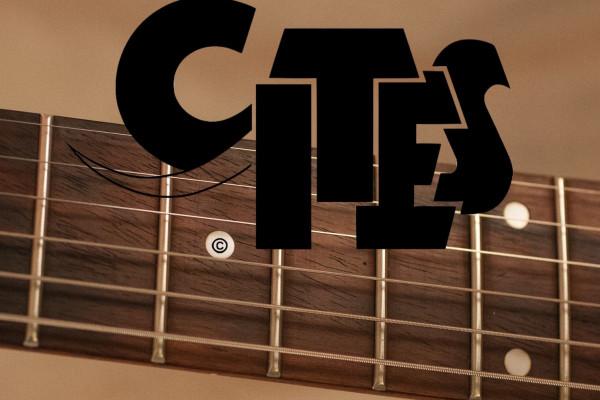 Los instrumentos con Palorrosa podrían quedar exentos de la regulación CITES