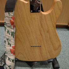 Fender Telecaster Warmoth 1962 (7)